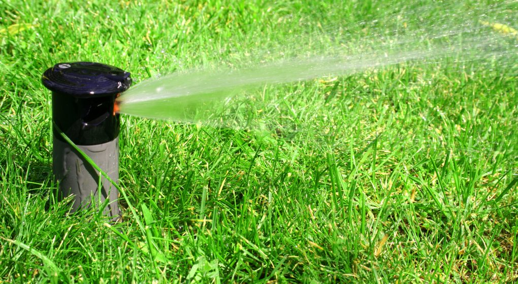 Automated Lawn Sprinkler